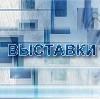 Выставки в Башмаково